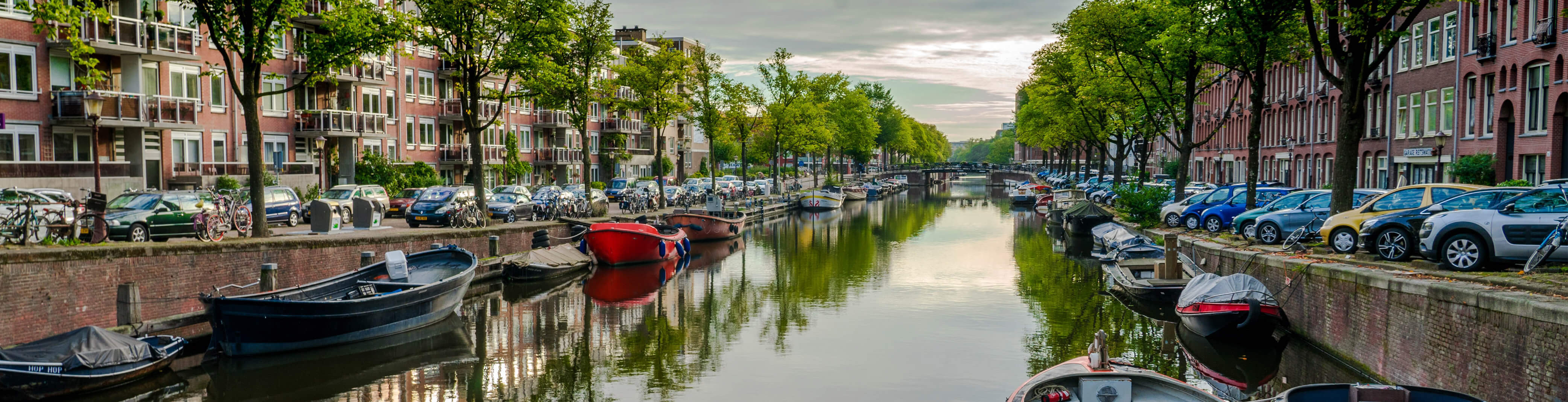 Online Training Courses In Amsterdam